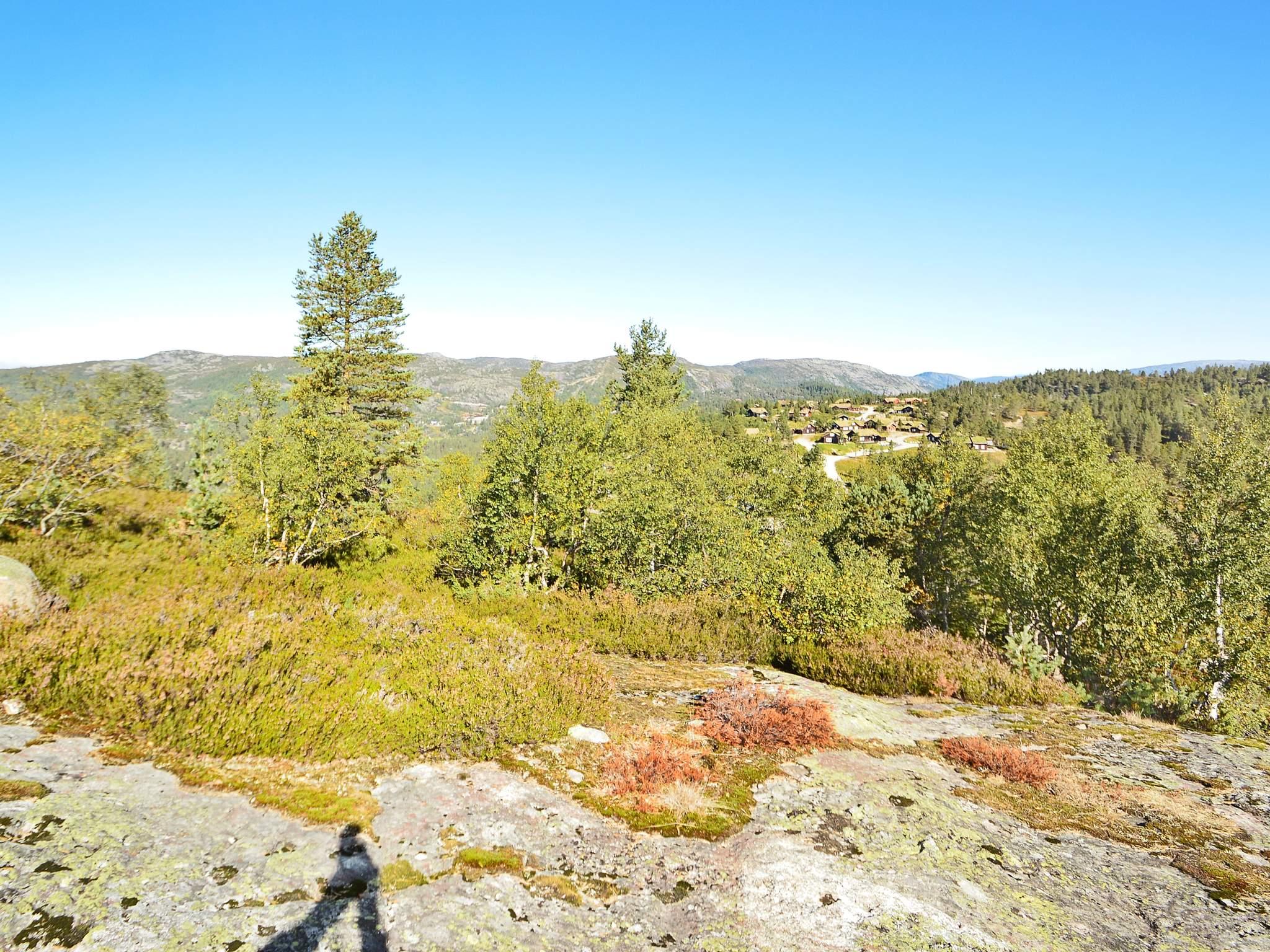 Ferienhaus Bortelid (316813), Åseral, Agder West, Südnorwegen, Norwegen, Bild 19