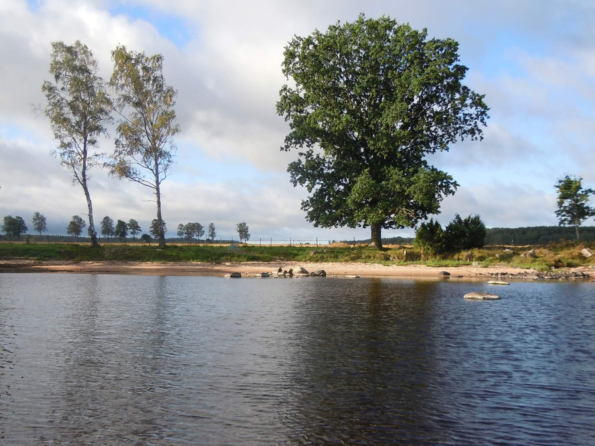 Ferienhaus Hova (432883), Hova, Västra Götaland län, Westschweden, Schweden, Bild 19
