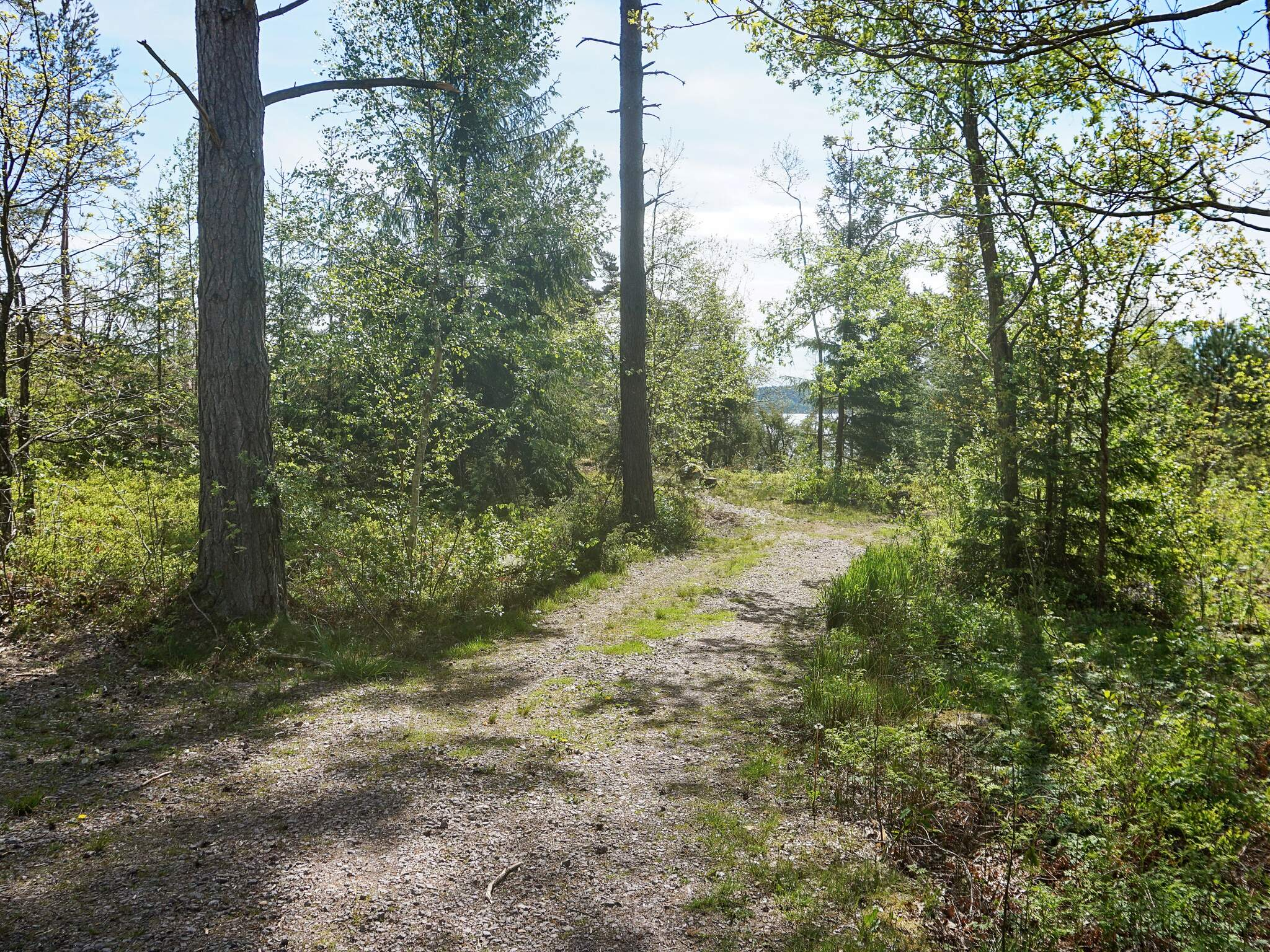 Ferienhaus Barkedal (2627959), Brastad, Västra Götaland län, Westschweden, Schweden, Bild 16