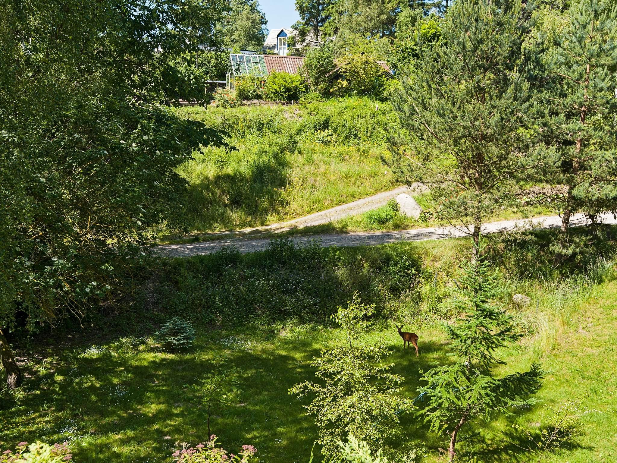 Ferienhaus Ebeltoft (494749), Ebeltoft, , Ostjütland, Dänemark, Bild 15