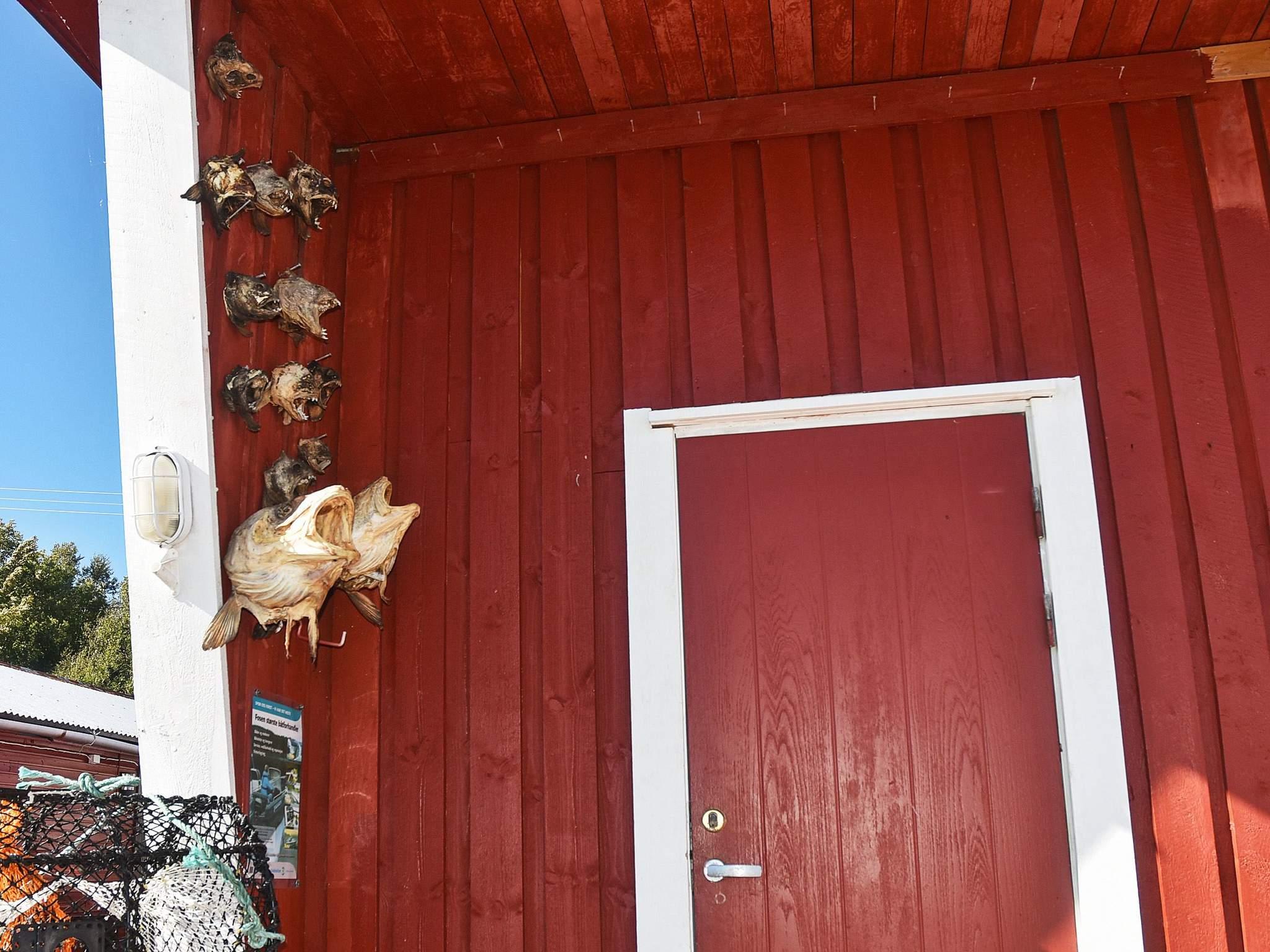 Ferienhaus Steinvik (501726), Oksvoll, Tröndelag Nord - Trondheimfjord Nord, Mittelnorwegen, Norwegen, Bild 20