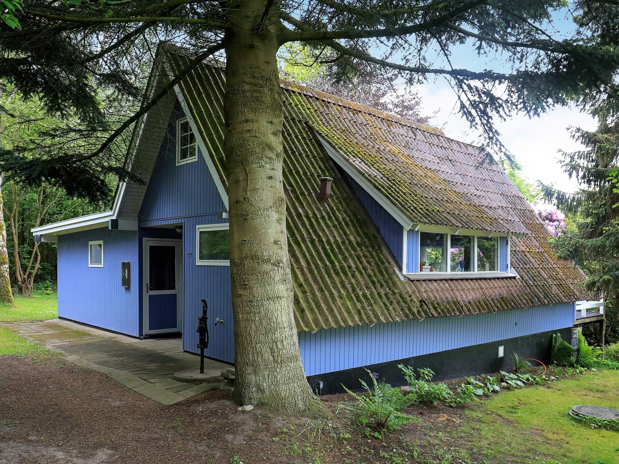 Maison de vacances Sallingsund (580377), Roslev, , Limfjord, Danemark, image 17