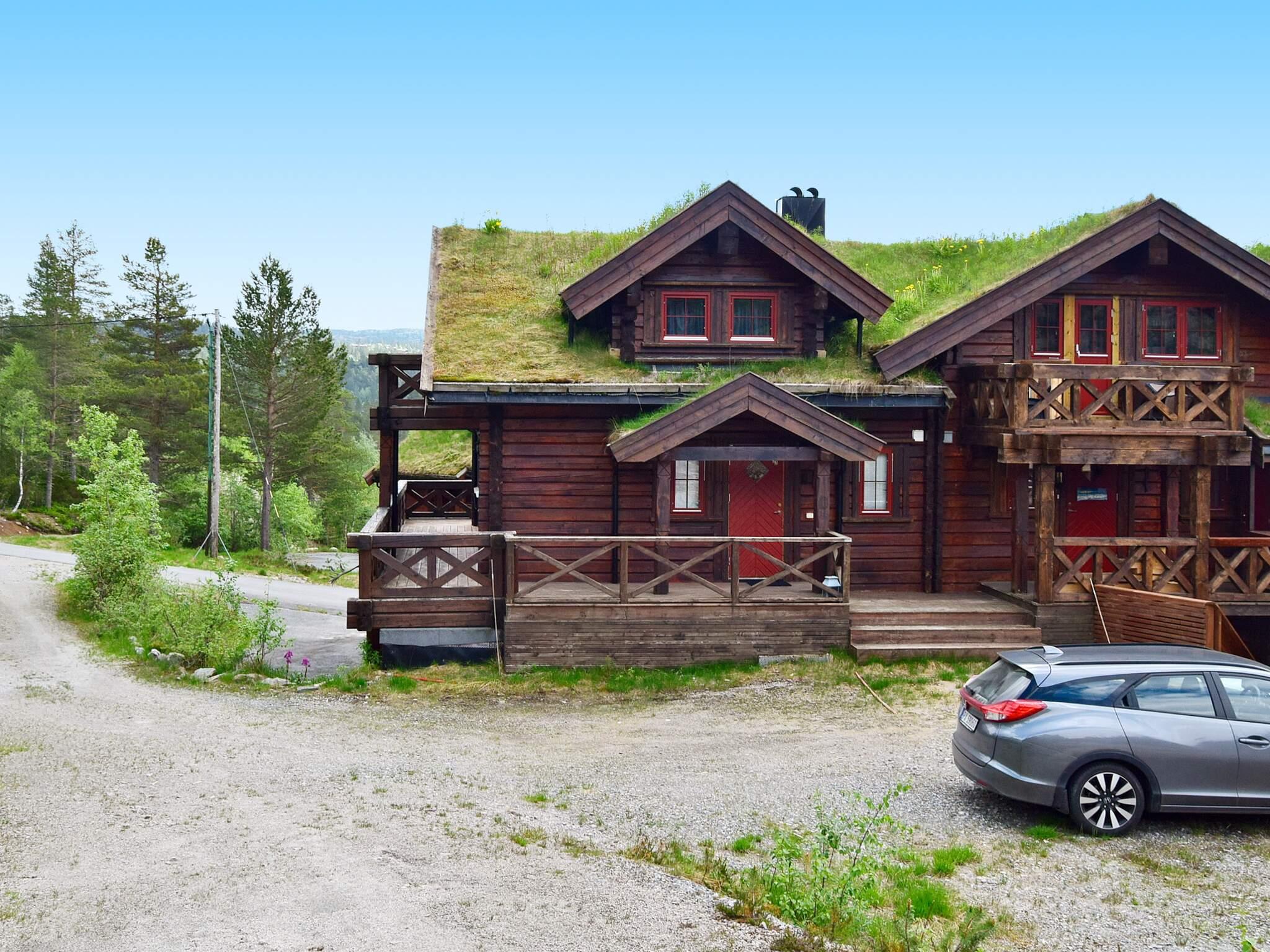 Ferienwohnung Bortelid (674597), Åseral, Agder West, Südnorwegen, Norwegen, Bild 13