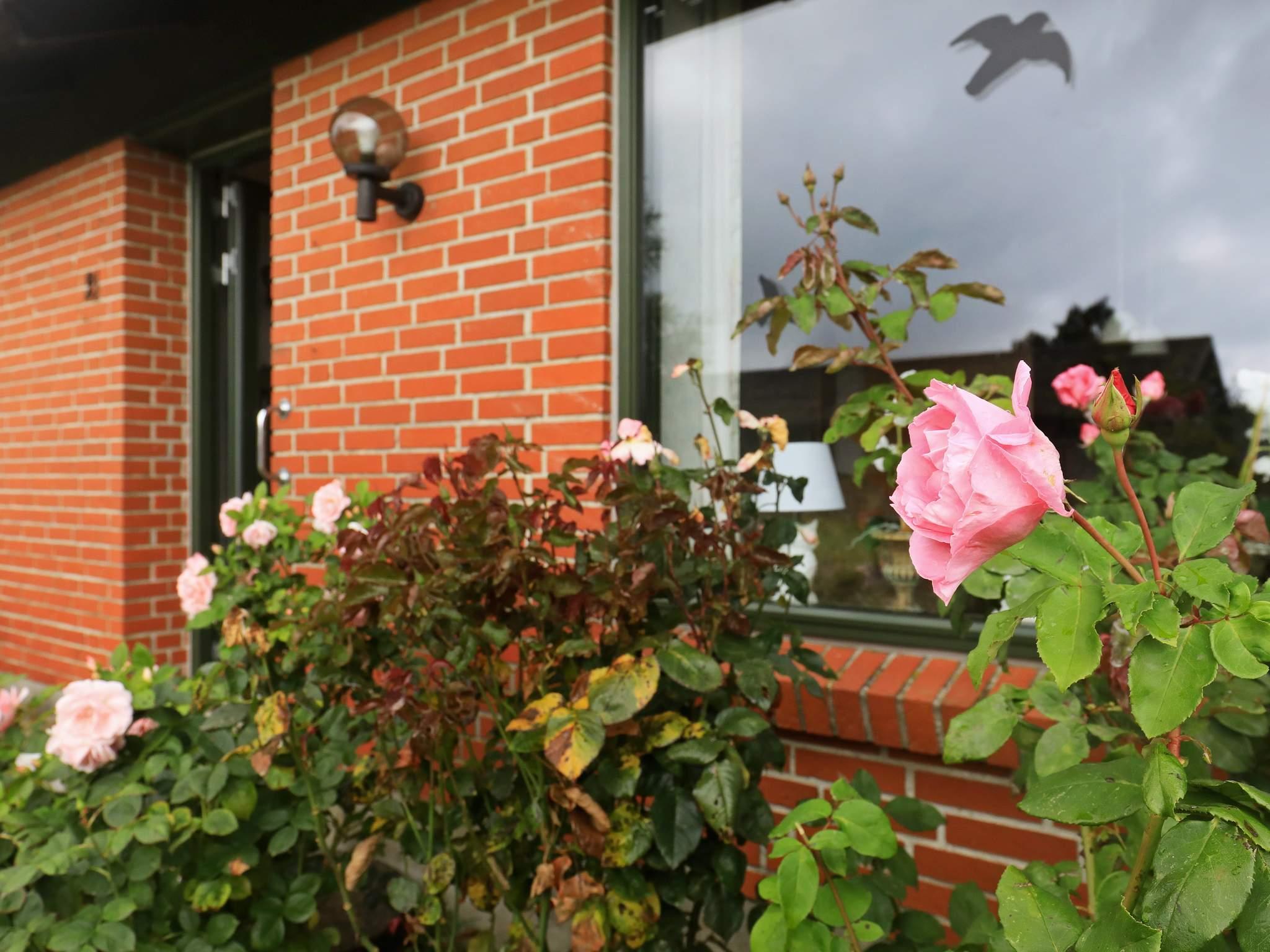 Maison de vacances Ærø/Ærøskøbing (2354716), Ærøskøbing, , Ærø, Danemark, image 27