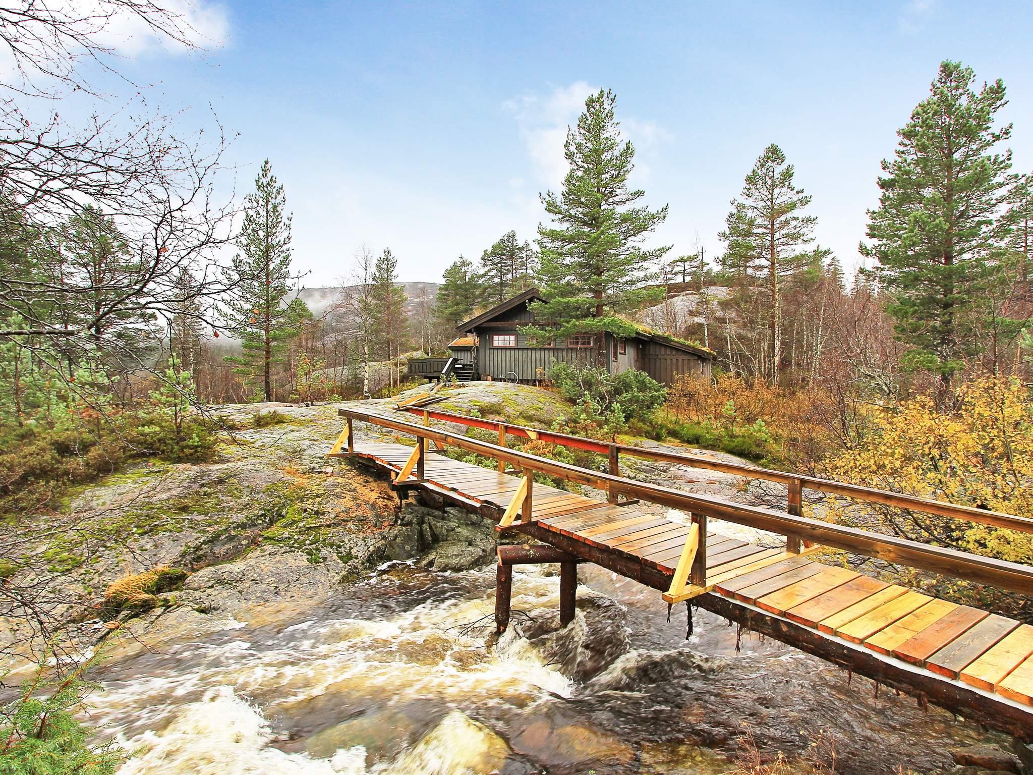 Ferienhaus Åseral (1652897), Åseral, Agder West, Südnorwegen, Norwegen, Bild 17