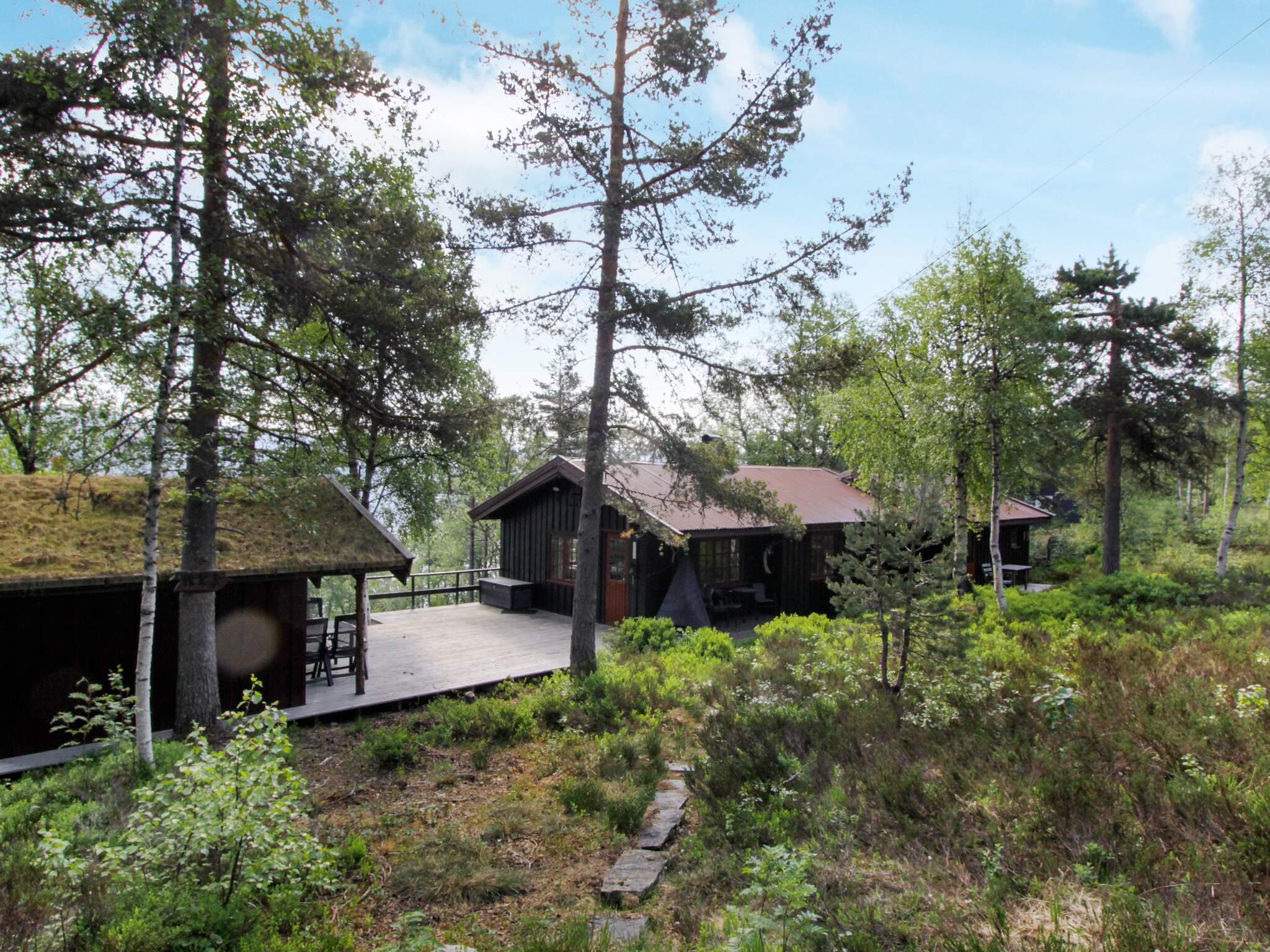 Ferienhaus Åseral (2556669), Åseral, Agder West, Südnorwegen, Norwegen, Bild 12