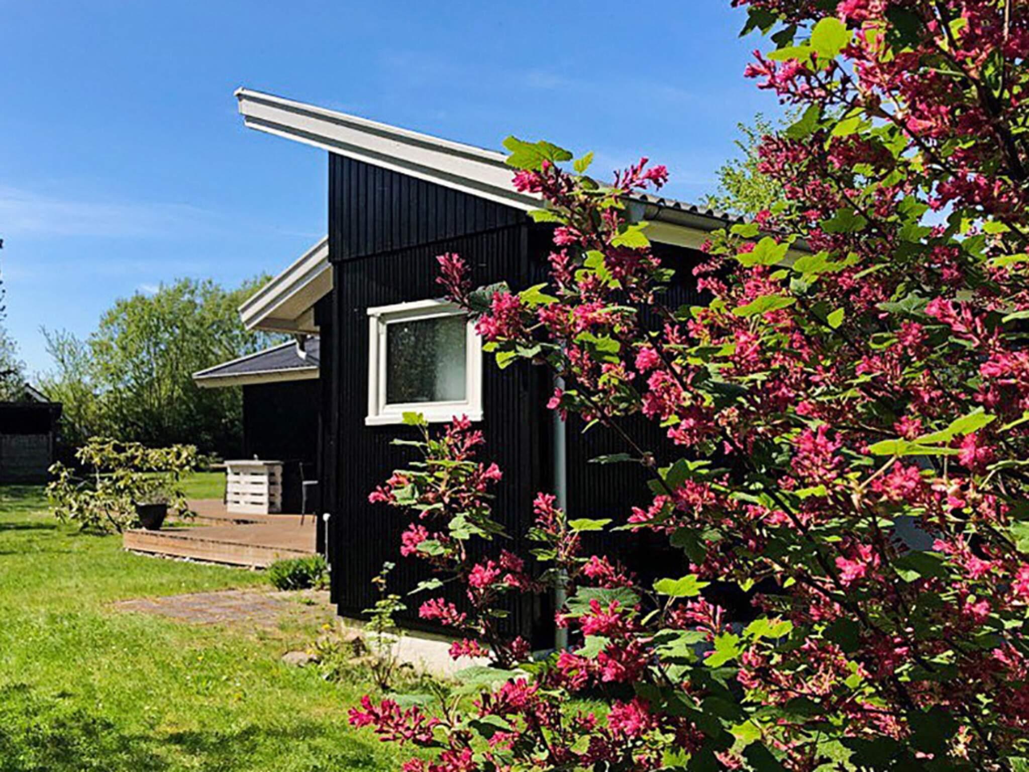 Ferienhaus Kulhuse (2557364), Kulhuse, , Nordseeland, Dänemark, Bild 18
