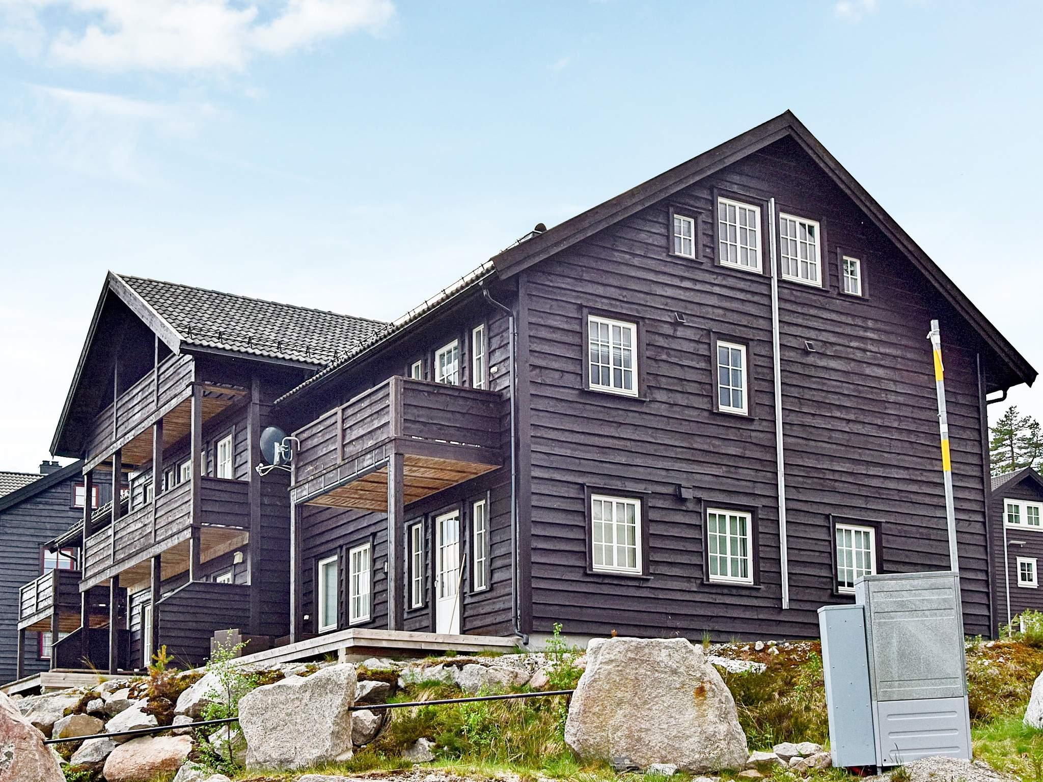 Ferienhaus Bortelid (1923267), Åseral, Agder West, Südnorwegen, Norwegen, Bild 1