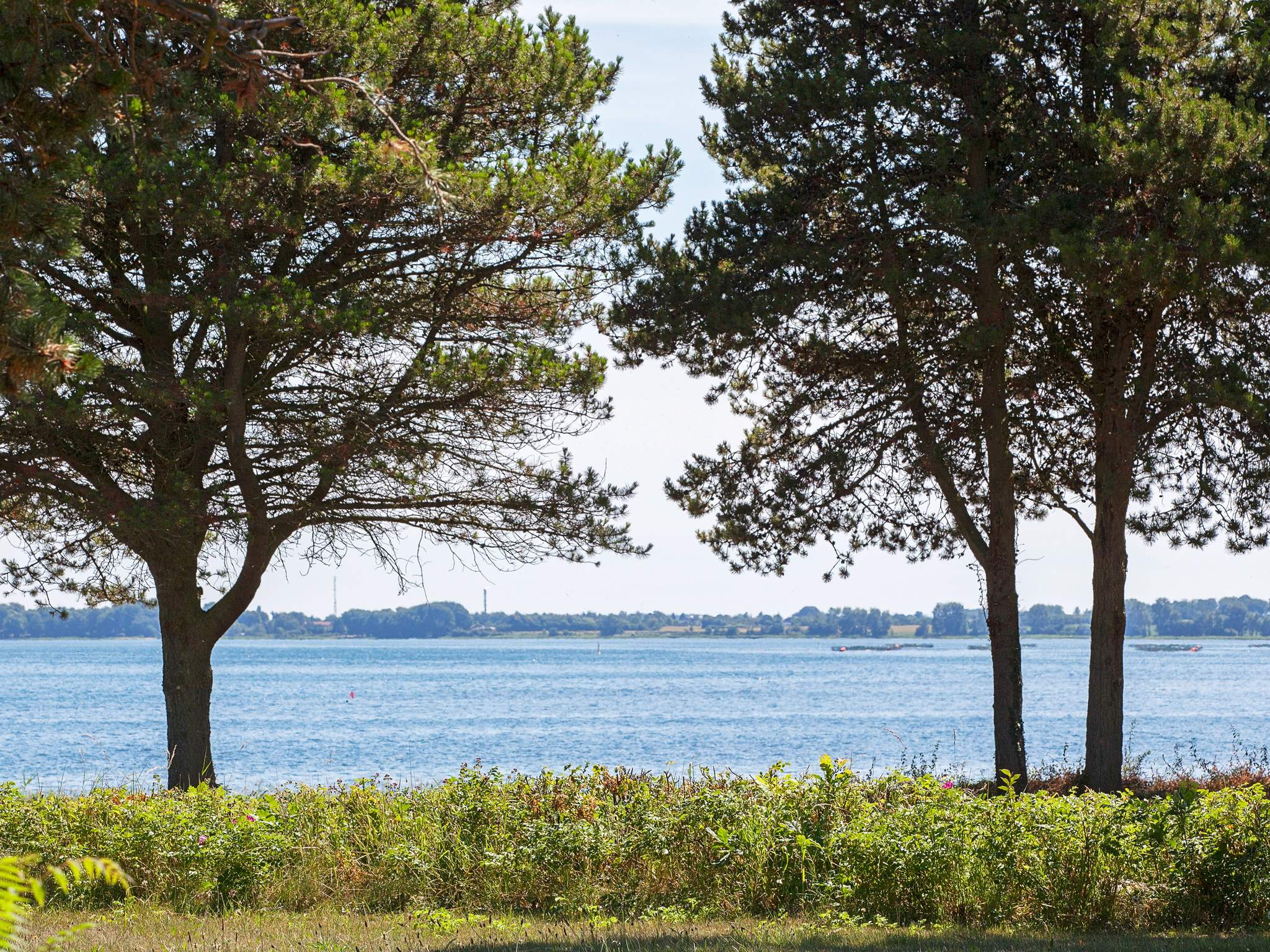 Ferienhaus Sortsø Strand (2448733), Sortsø, , Falster, Dänemark, Bild 14