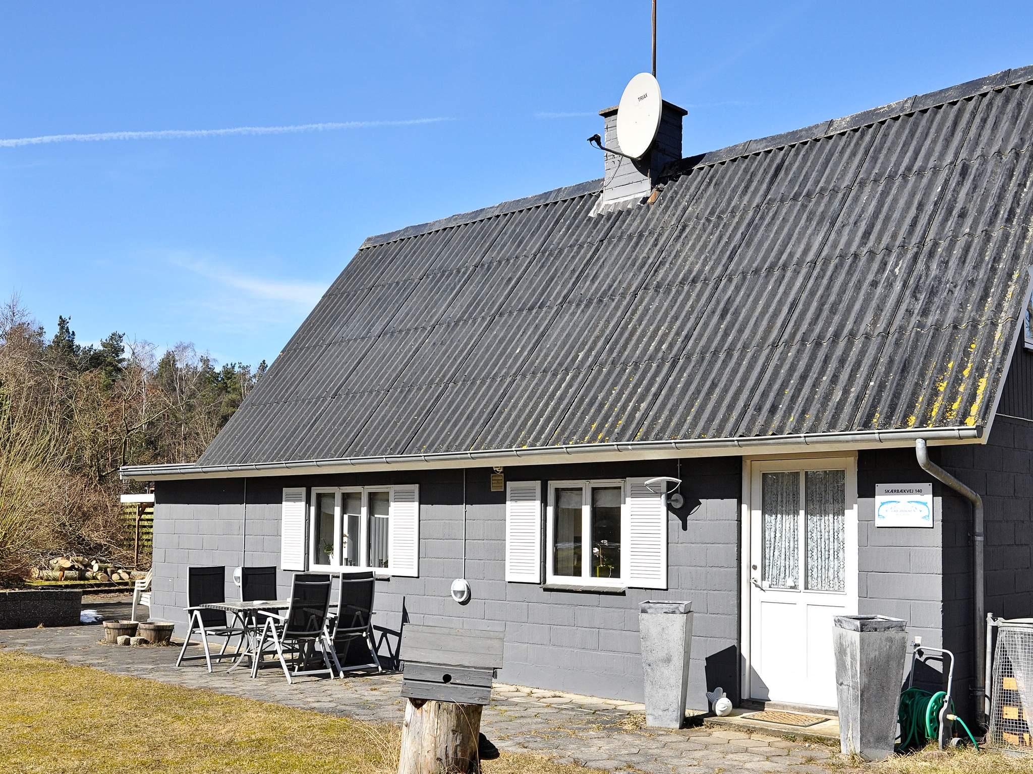 Ferienhaus Silkeborg (757425), Silkeborg, , Ostjütland, Dänemark, Bild 1