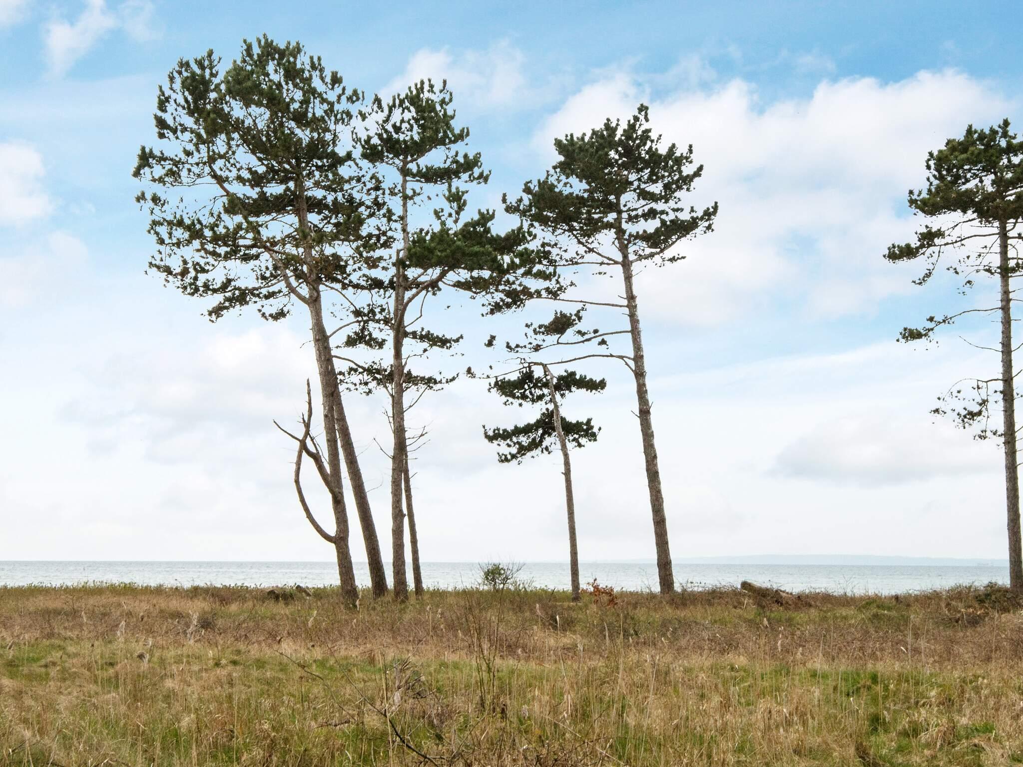 Ferienhaus Skødshoved (809942), Skødshoved Strand, , Dänische Ostsee, Dänemark, Bild 16