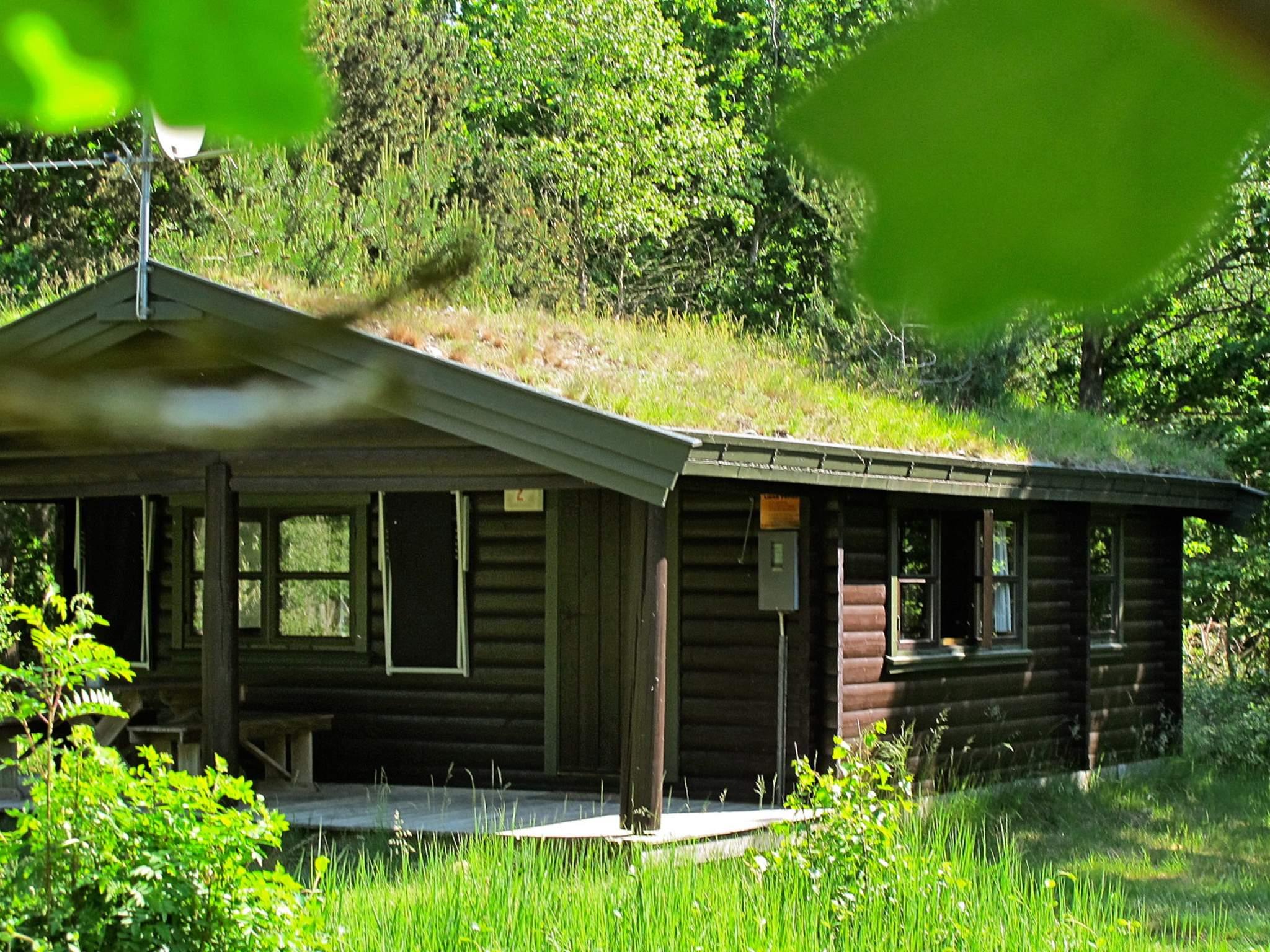 Ferienhaus Læsø/Vesterø (88191), Læsø, Læsø, Dänische Ostsee, Dänemark, Bild 1