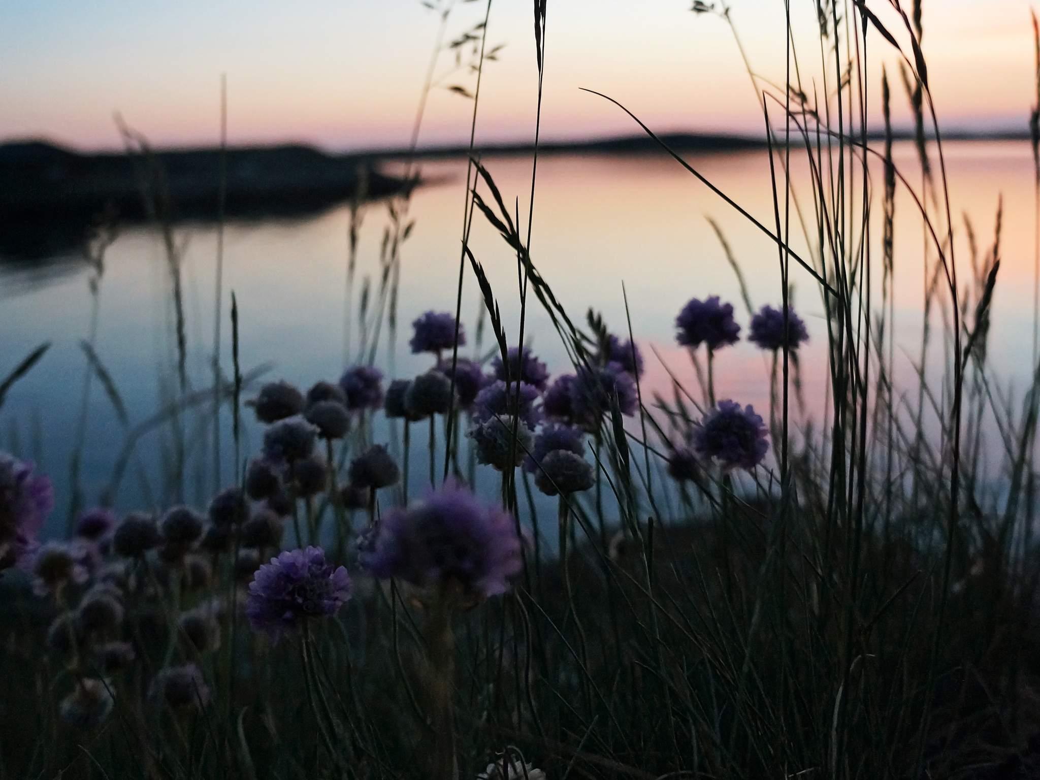 Ferienhaus Grundsund (995771), Grundsund, Västra Götaland län, Westschweden, Schweden, Bild 24