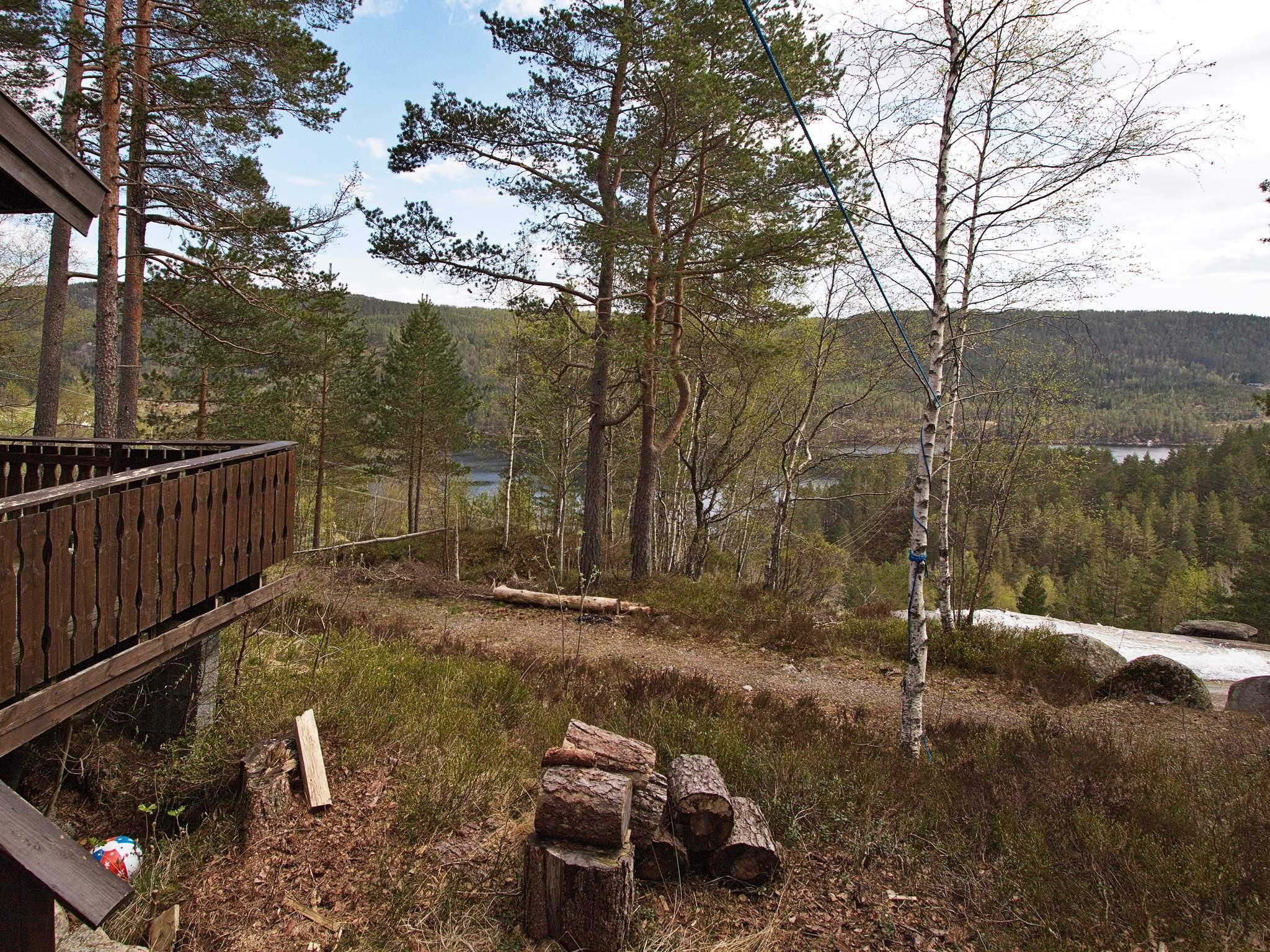 Ferienhaus Bortelid (1026043), Åseral, Agder West, Südnorwegen, Norwegen, Bild 1