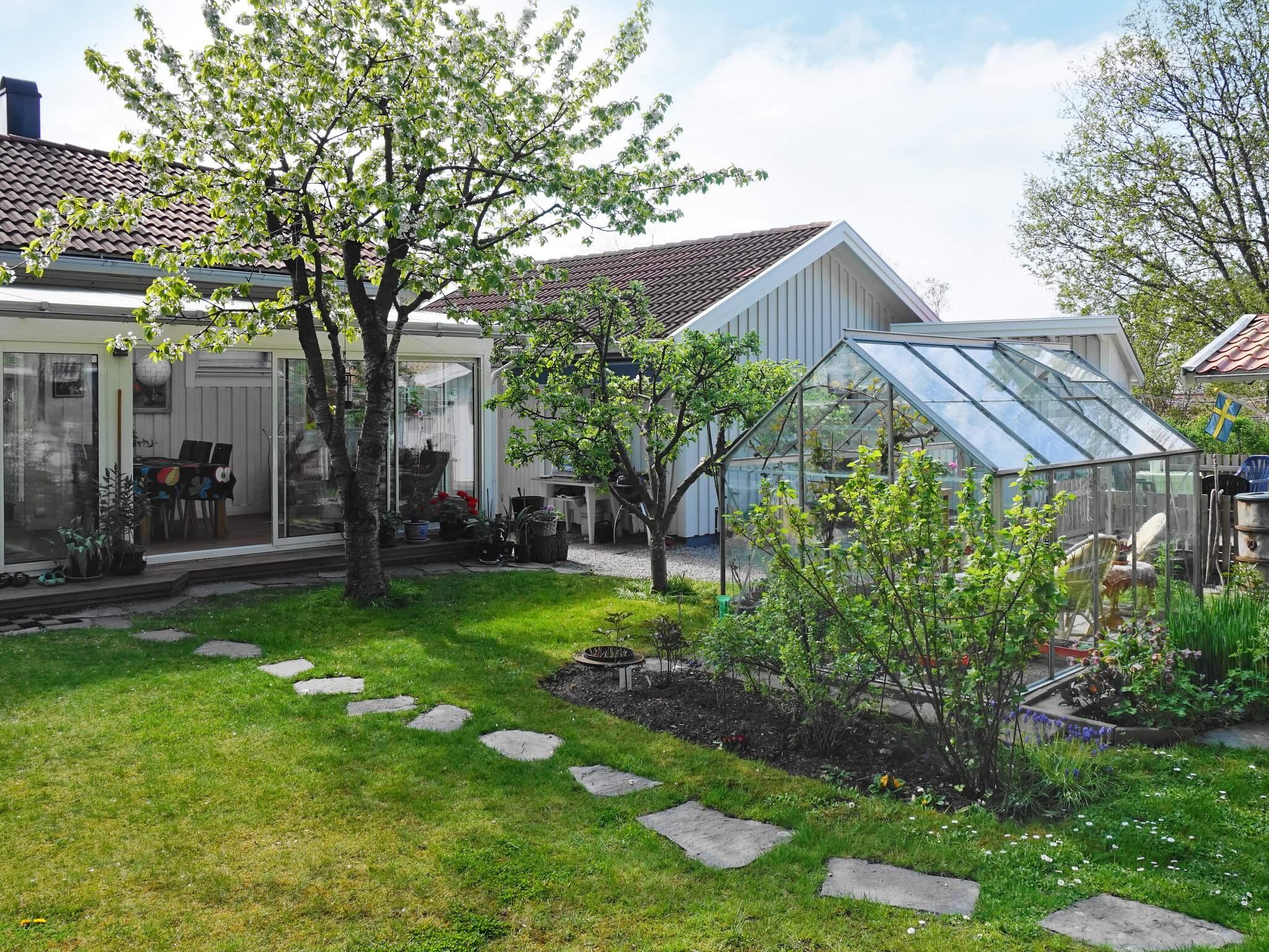 Ferienhaus Tjörn/Hakenäset (2611484), Hakenäset, Tjörn, Westschweden, Schweden, Bild 7
