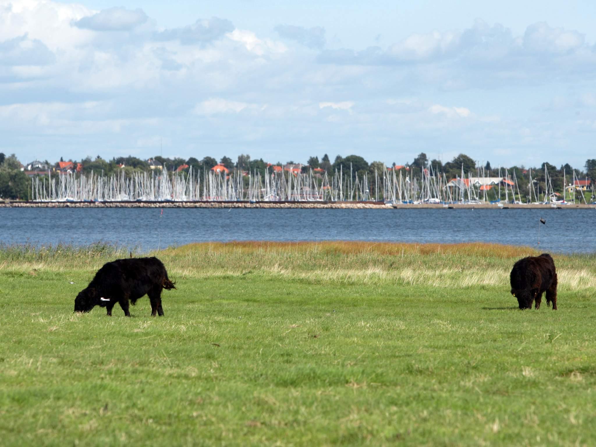 Ferienhaus Gerlev Strandpark (84253), Gerlev, , Nordseeland, Dänemark, Bild 16