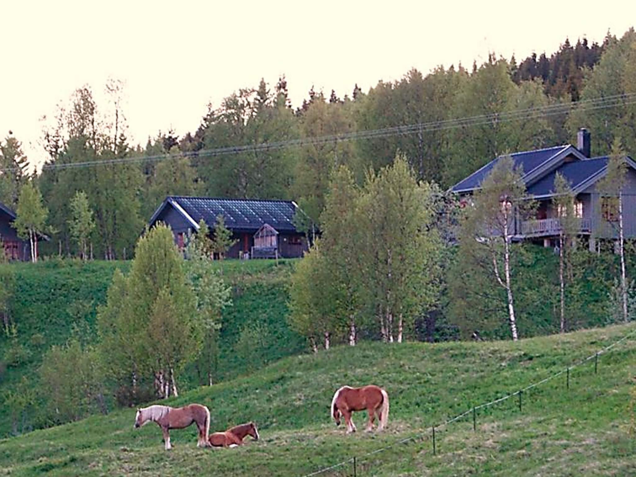 Ferienhaus Brattvoll (85088), Nordli, Tröndelag Nord - Trondheimfjord Nord, Mittelnorwegen, Norwegen, Bild 10
