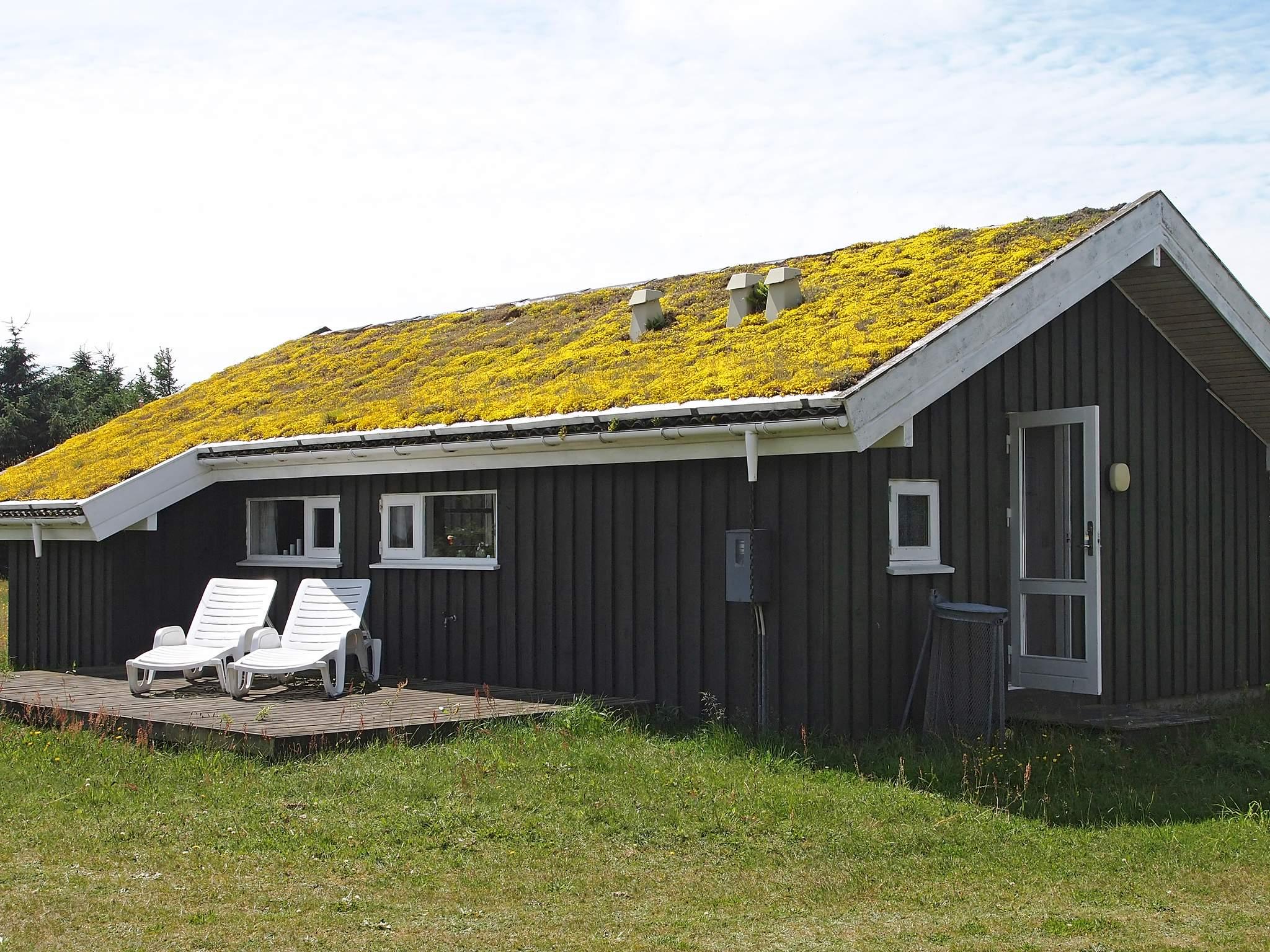 Ferienhaus Rødhus Strand (85436), Rødhus Klit, , Nordwestjütland, Dänemark, Bild 6