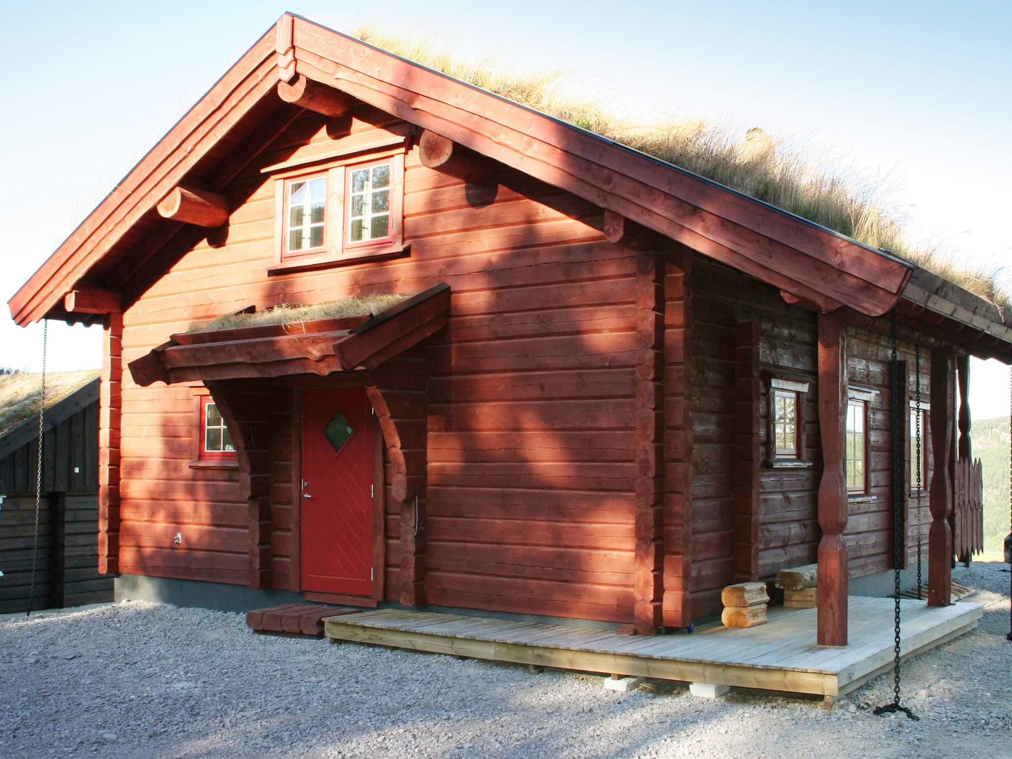 Ferienhaus Eikerapen (179811), Åseral, Agder West, Südnorwegen, Norwegen, Bild 1