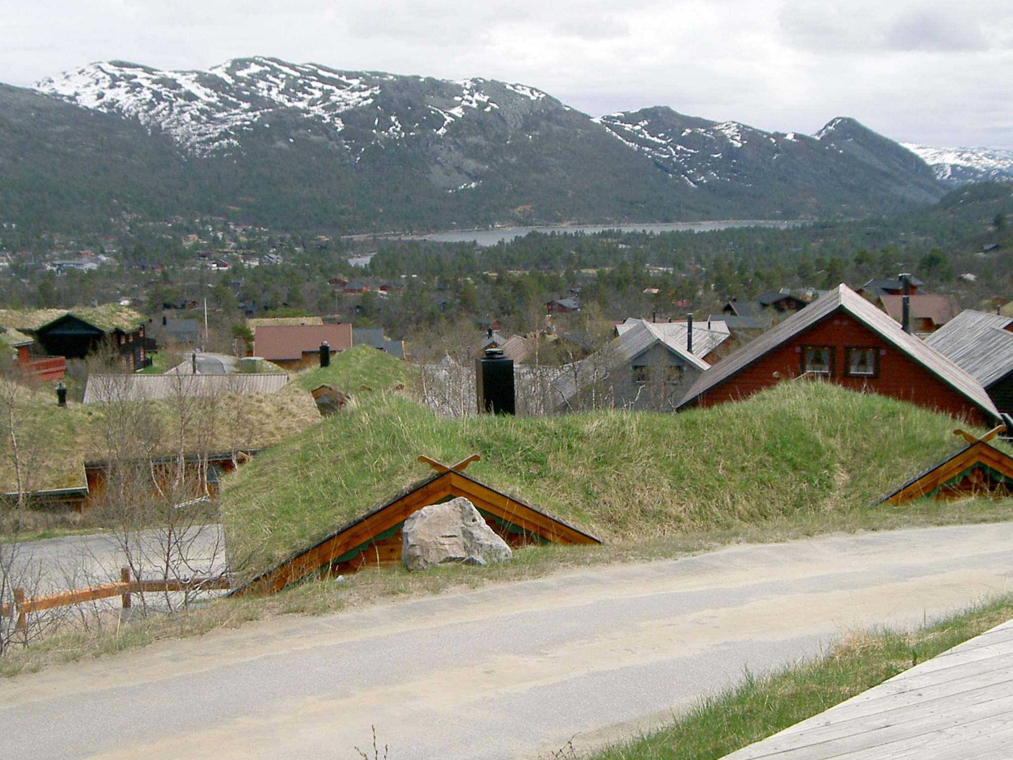 Ferienhaus Hovden (216912), Hovden, Agder Ost, Südnorwegen, Norwegen, Bild 5