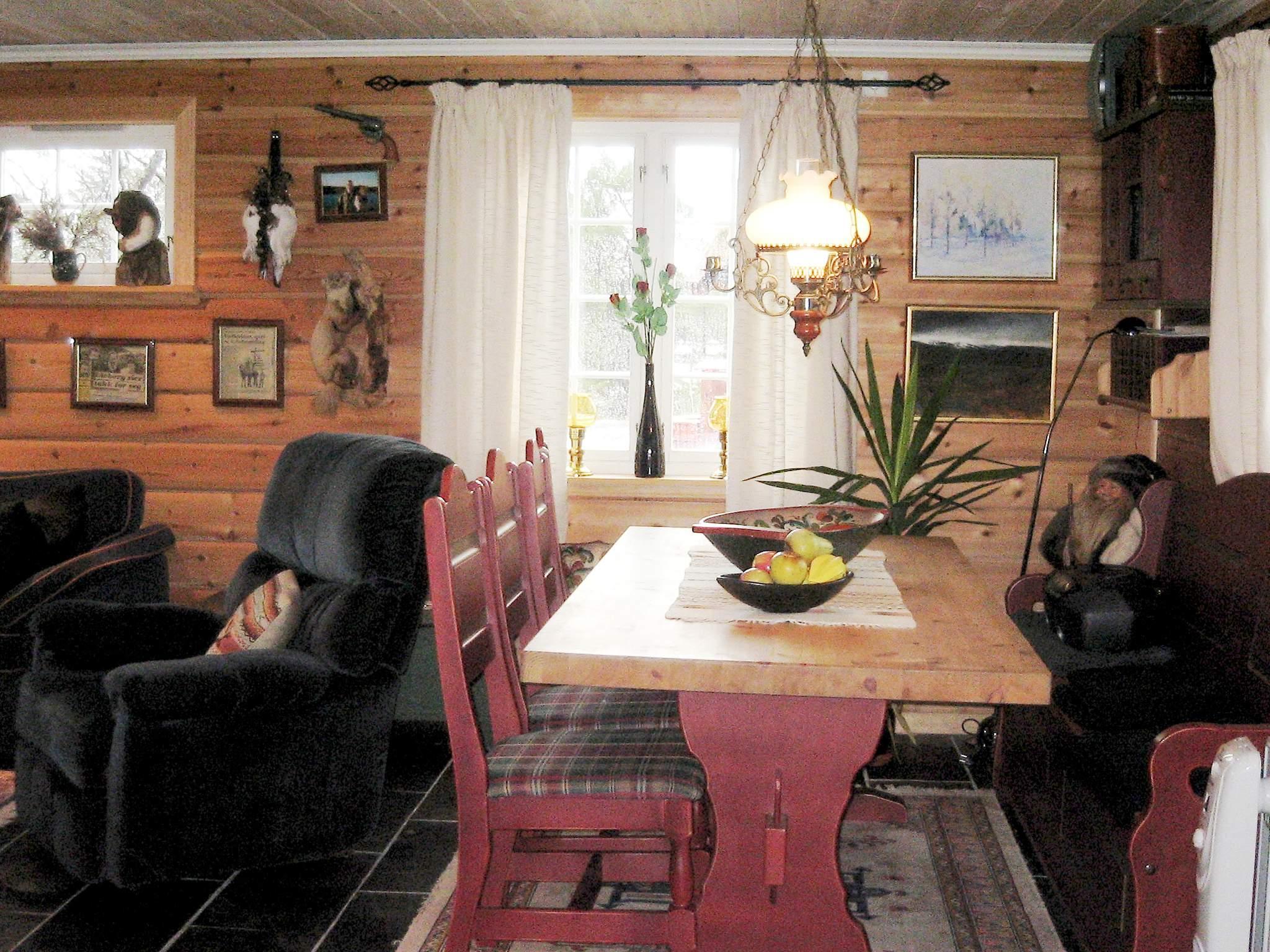 Ferienhaus Hovden (222102), Hovden, Agder Ost, Südnorwegen, Norwegen, Bild 3
