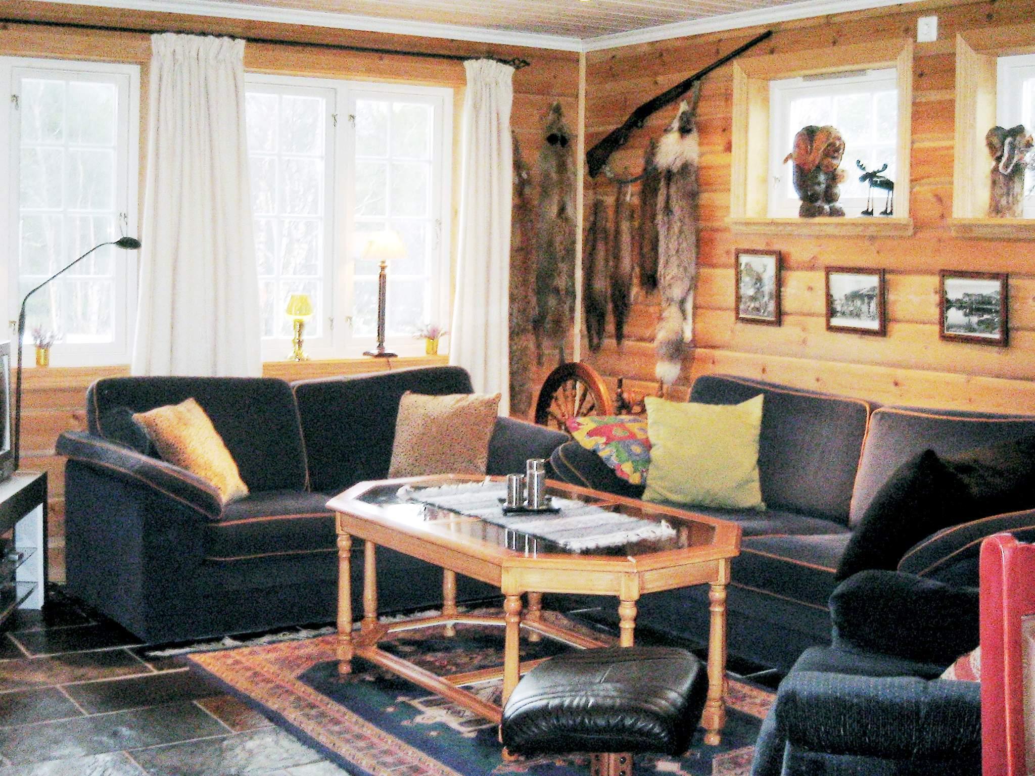 Ferienhaus Hovden (222102), Hovden, Agder Ost, Südnorwegen, Norwegen, Bild 2