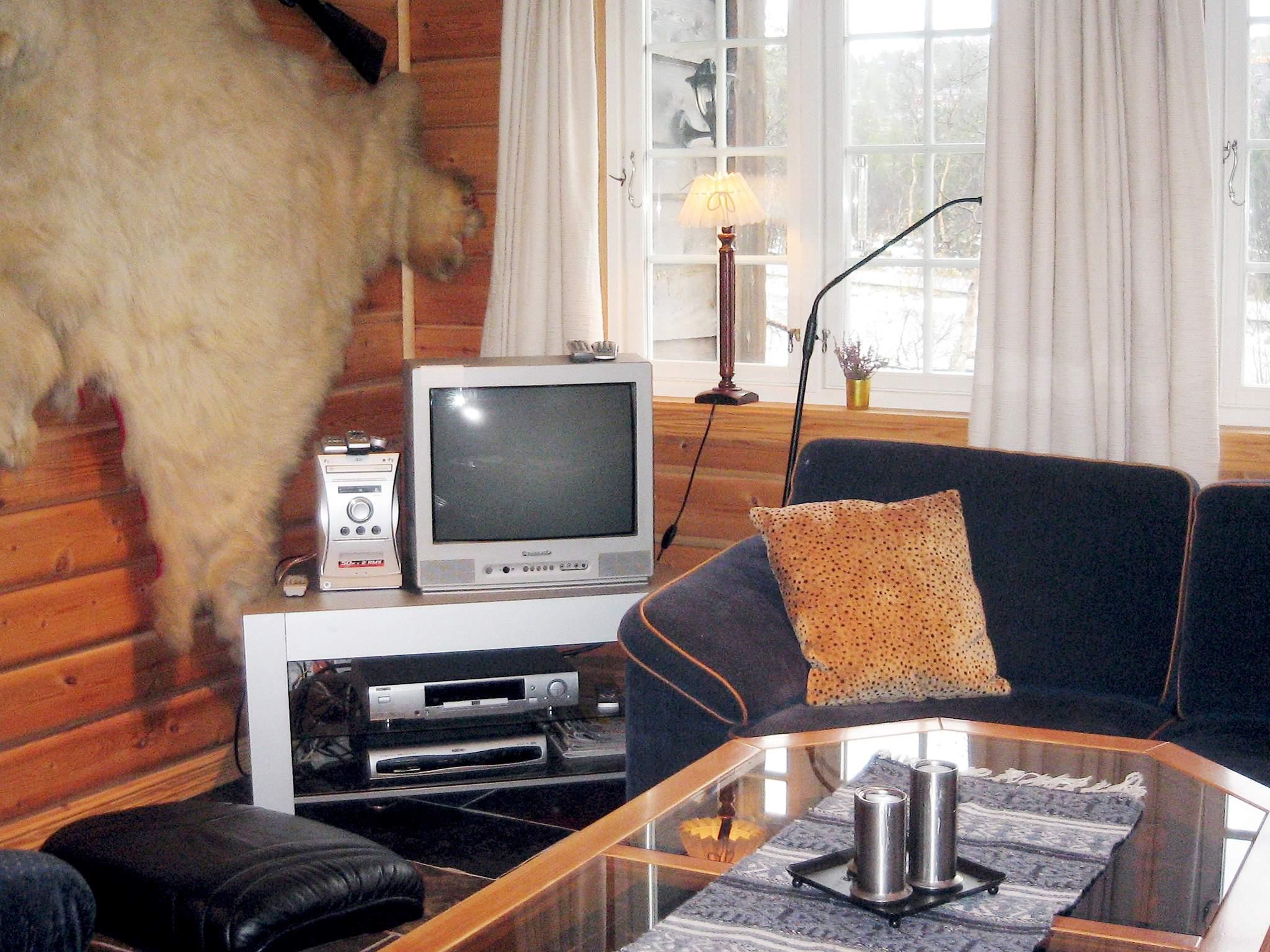 Ferienhaus Hovden (222102), Hovden, Agder Ost, Südnorwegen, Norwegen, Bild 5