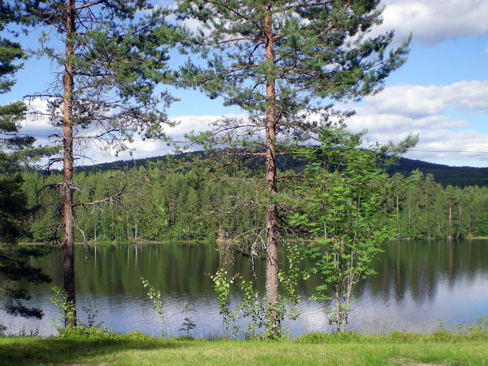 Ferienhaus Lekvattnet (87052), Torsby, Värmlands län, Mittelschweden, Schweden, Bild 8