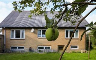 Ferienhaus DCT-49398 in Løkken für 7 Personen - Bild 142772276