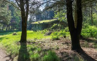 Sommerhus DCT-90222 i Hune, Blokhus til 6 personer - billede 44688994