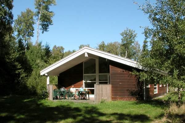 Ferienhaus Hasle