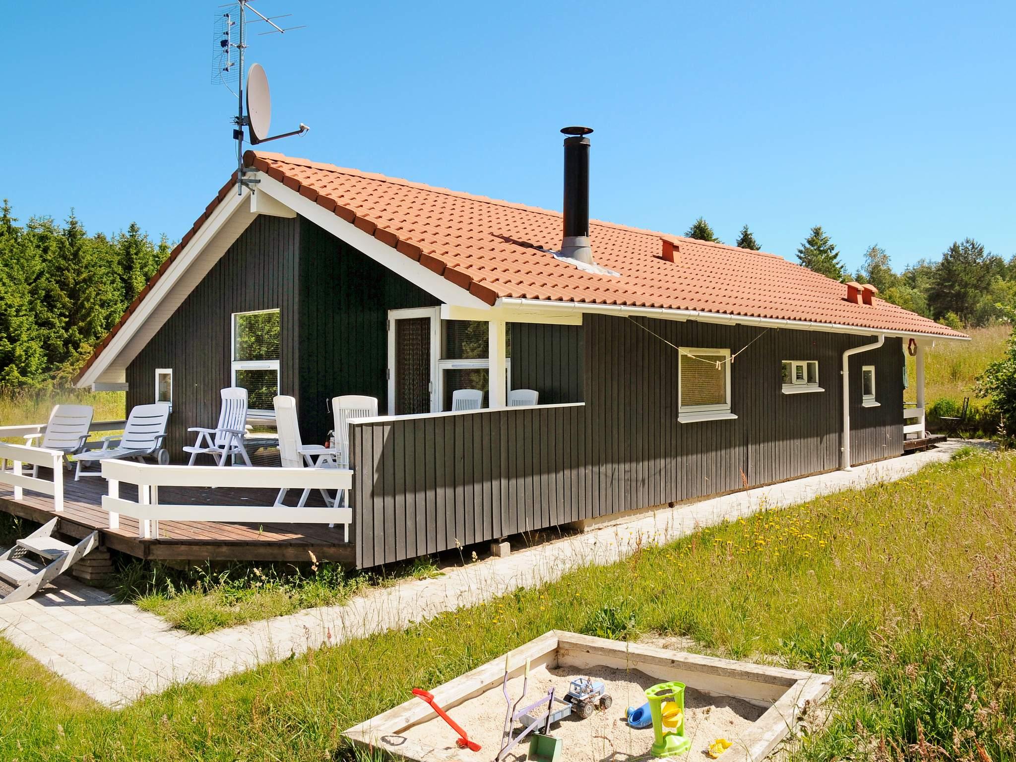 Ferienhaus Silkeborg (84068), Silkeborg, , Ostjütland, Dänemark, Bild 18