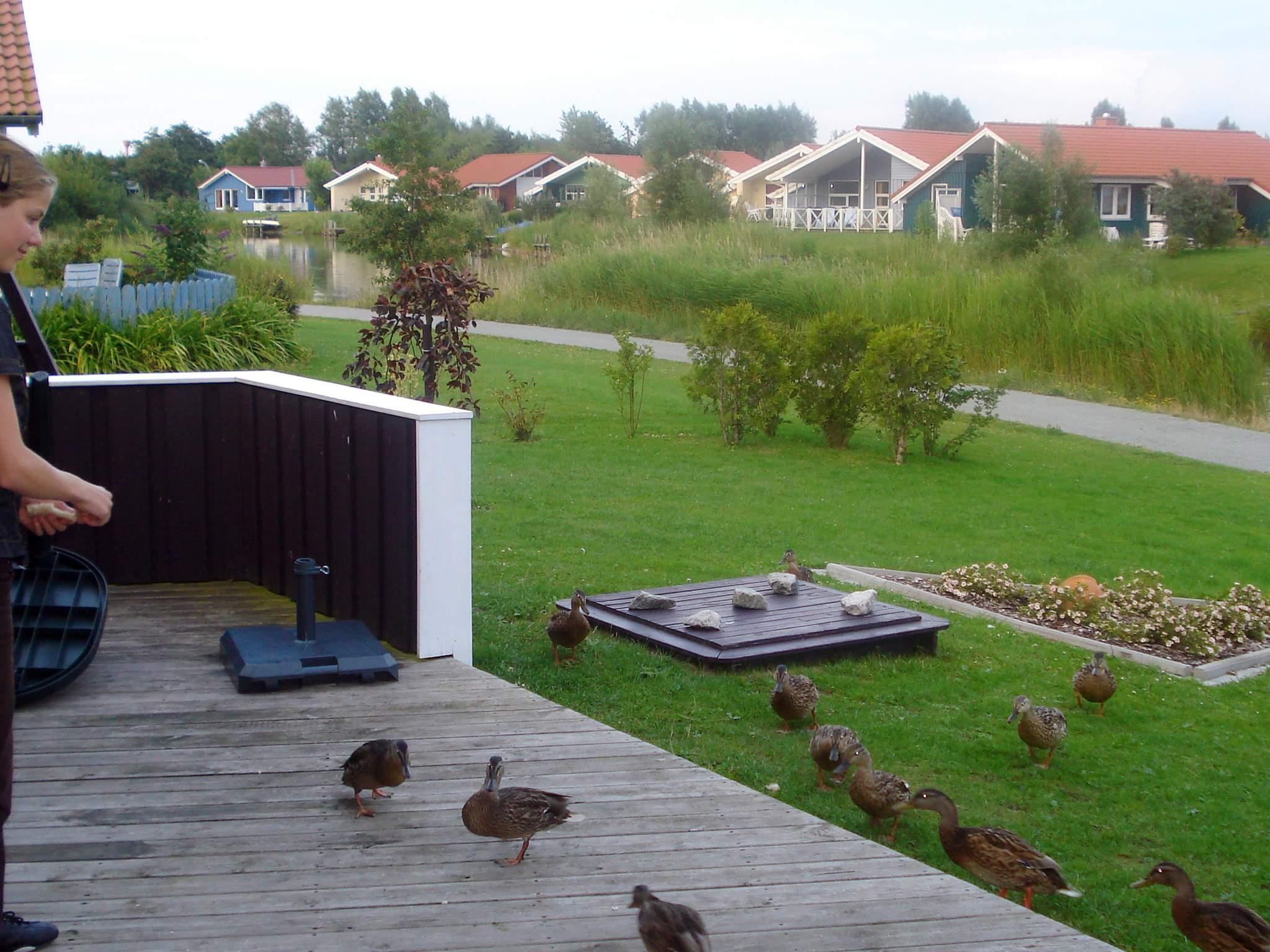 Ferienhaus Otterndorf (86195), Otterndorf, Cuxhaven, Niedersachsen, Deutschland, Bild 17