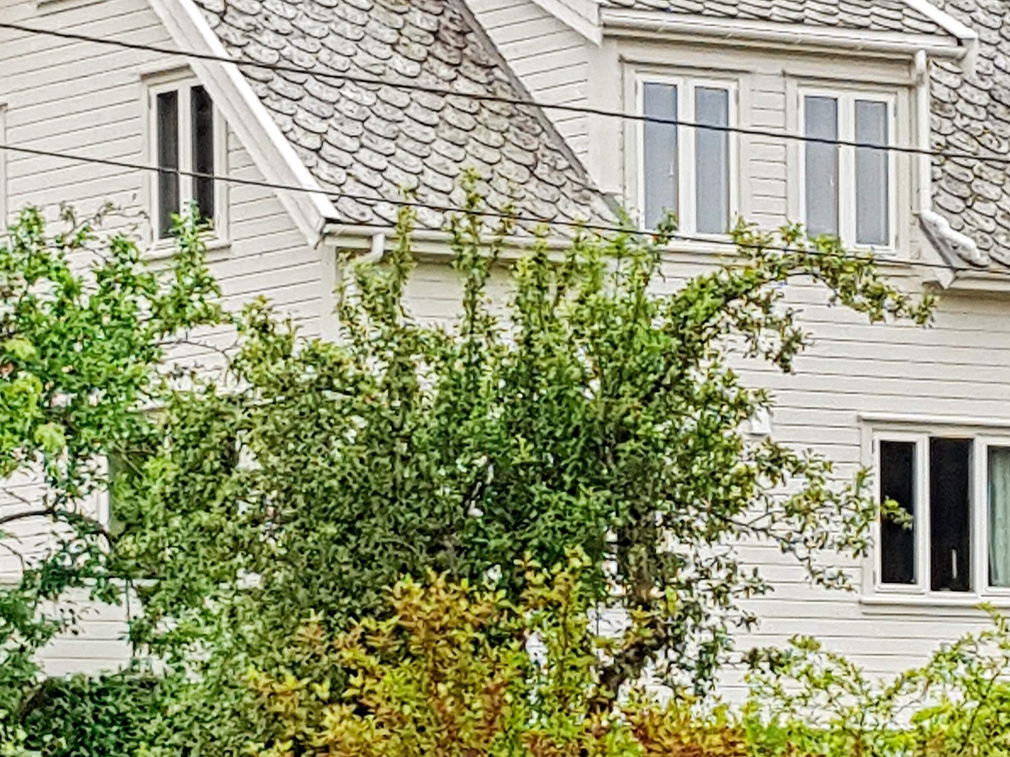 Ferienhaus Haraldseid (125457), Skjold, Rogaland - Boknalfjord, Westnorwegen, Norwegen, Bild 14