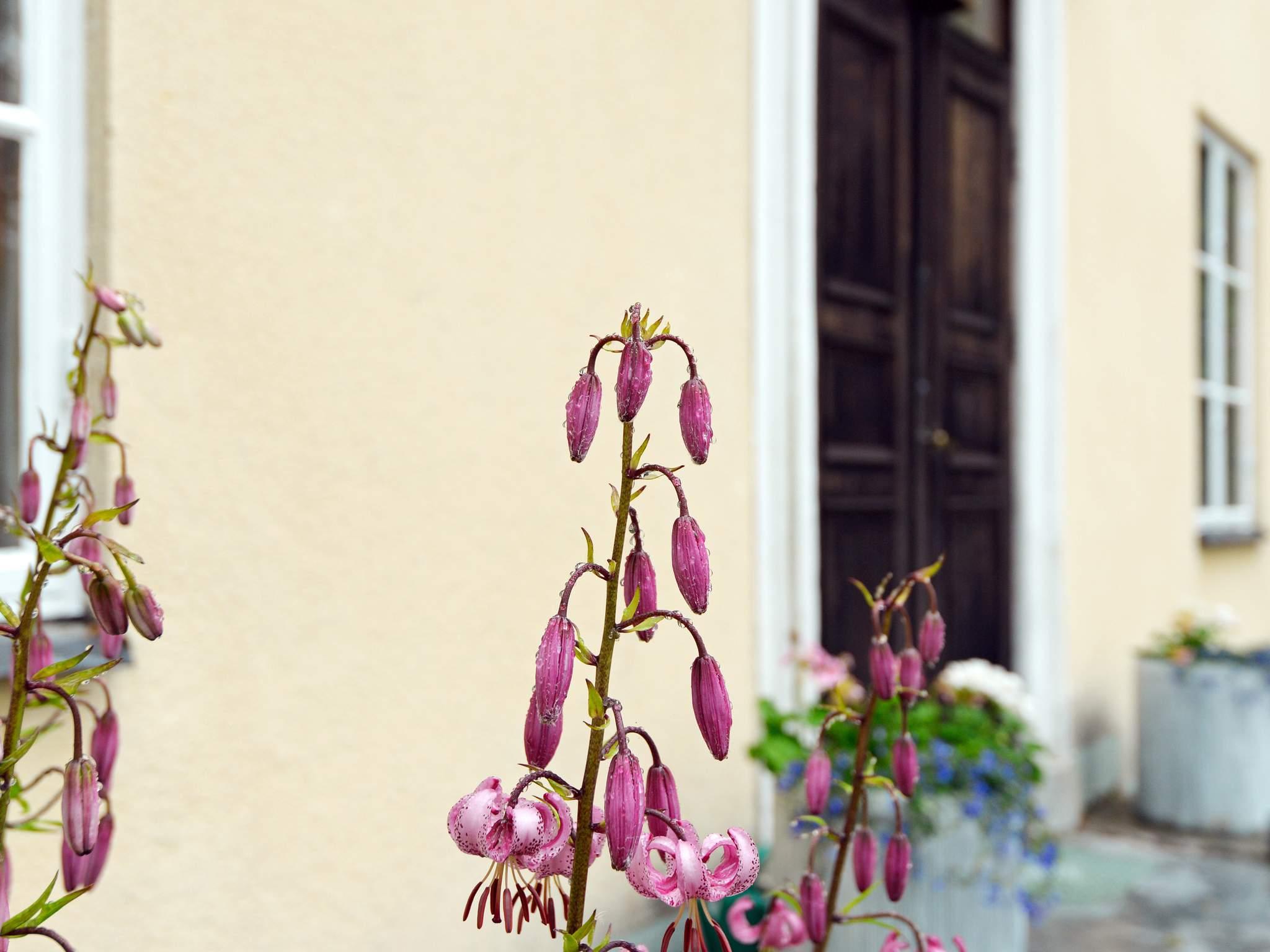 Ferienhaus Eskilstuna (746803), Lista, Södermanlands län, Mittelschweden, Schweden, Bild 32