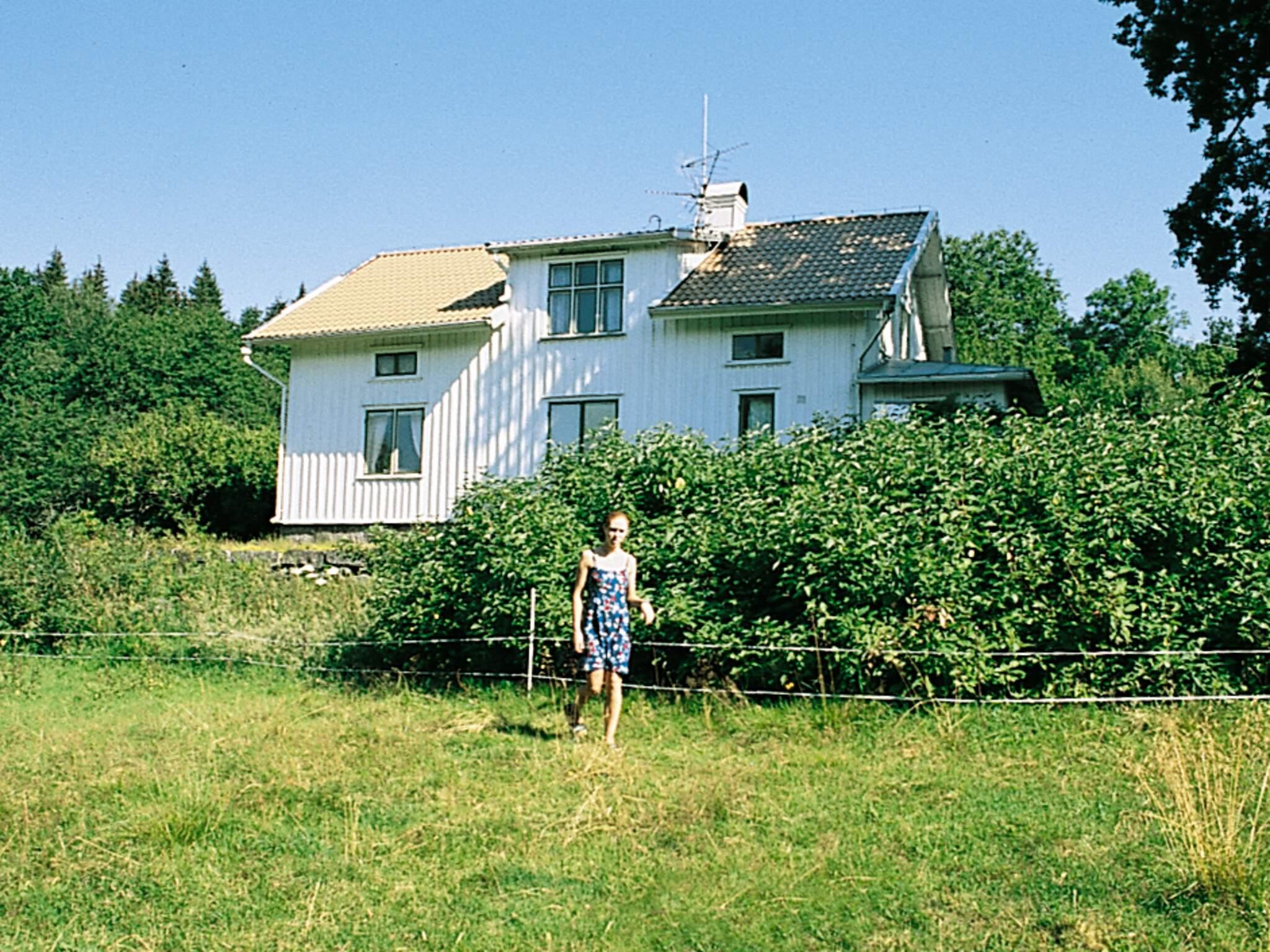 Ferienhaus Ambjörnarp (87120), Ambjörnarp, Västra Götaland län, Westschweden, Schweden, Bild 4